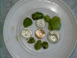 Notice the size compared to coins.